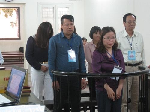 Cựu Giám đốc Halico tiếp tay cho trốn thuế hầu tòa - Ảnh 1