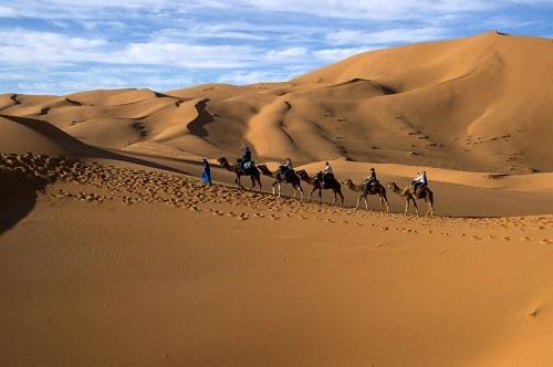 Tổng thống Trump gợi ý Tây Ban Nha xây tường trên sa mạc Sahara để chặn người di cư