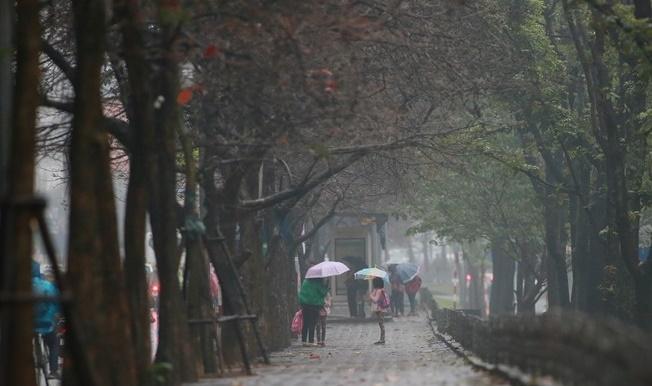 Dự báo thời tiết ngày 20/10: Áp thấp gây mưa ở nhiều nơi