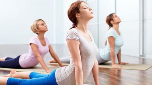 Kết quả hình ảnh cho Học yoga