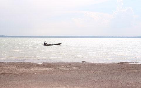 Cá sấu dài 1,2m sổng ra hồ Trị An