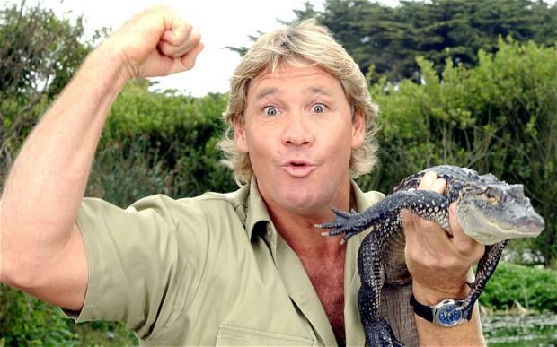 """""""Thợ săn cá sấu"""" tử vong vì bị cá đuối cắn"""