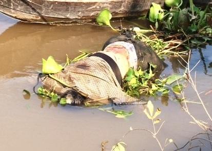 Phát hiện xác chết trôi sông, đang trong giai đoạn phân hủy