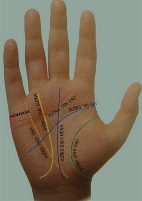 boi long ban tay 1 Xem bói bàn tay: Tướng tay thuộc dạng bôn ba vất vả