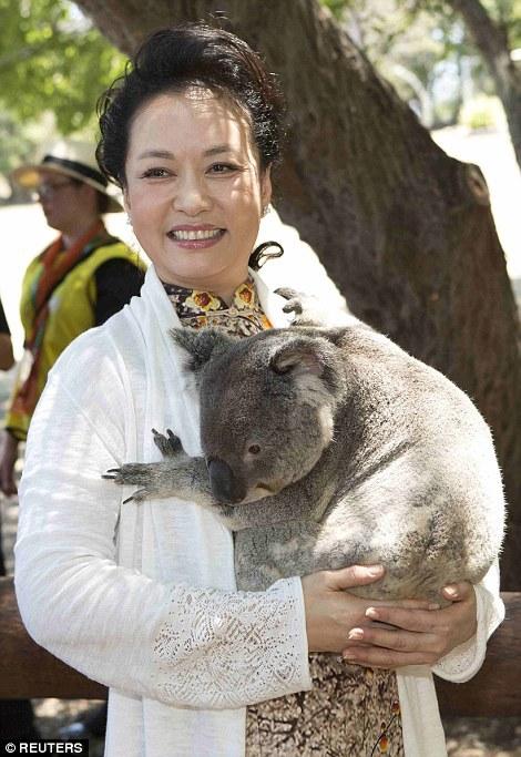 Gấu túi Koala giúp các nhà lãnh đạo xoa diu căng thẳng G20