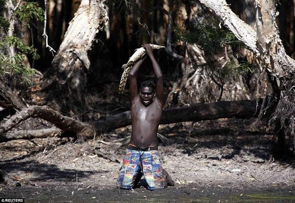 Cận cảnh một ngày đi săn cá sấu nguy hiểm của các thổ dân