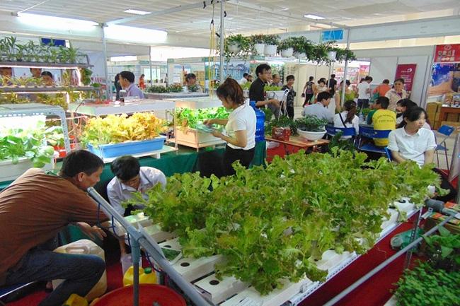 Nông sản sạch: Người kinh doanh hãy chỉ bán thứ mình ăn được - Ảnh 1