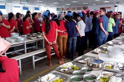 Nam Định: Công nhân phát hoảng vì phát hiện cơm có dòi  - ảnh 1