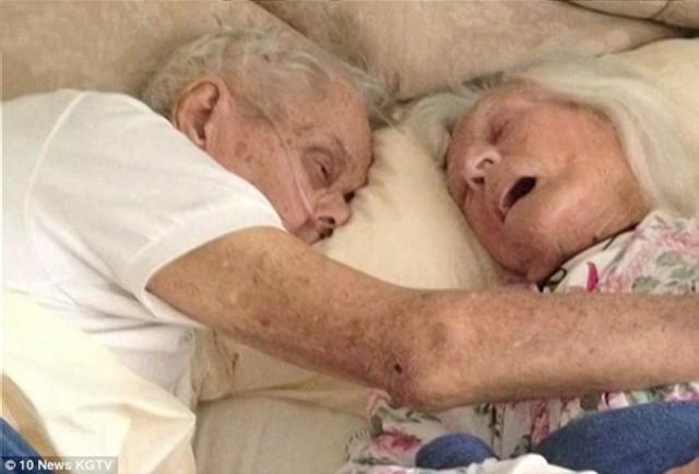 Những câu chuyện tình yêu bên giường bệnh đẹp như trong cổ tích - ảnh 1