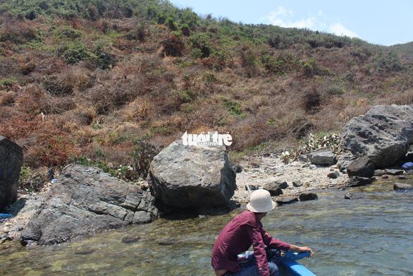 Khánh Hòa: Xuất hiện tình trạng phá rừng để chiếm đất kinh doanh - ảnh 1