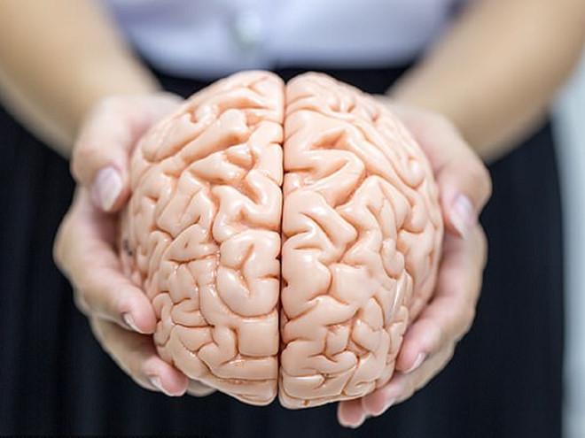 Sống khỏe mạnh chỉ với một nửa bộ não - ảnh 1