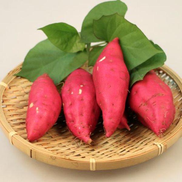 Thực hư siêu thực phẩm giúp trường thọ, chống ung thư, có đầy ở Việt Nam? - ảnh 1