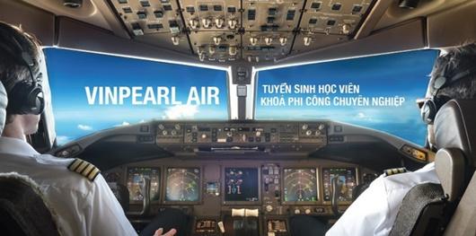 Tỷ phú Phạm Nhật Vượng bất ngờ dừng dự án Vinpearl Air - ảnh 1