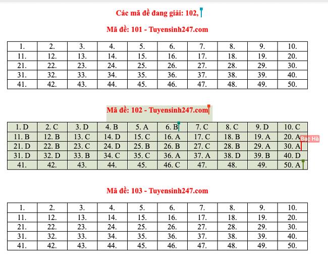 Gợi ý đáp án môn Toán mã đề 101,102,103 tốt nghiệp THPT 2020  - ảnh 1