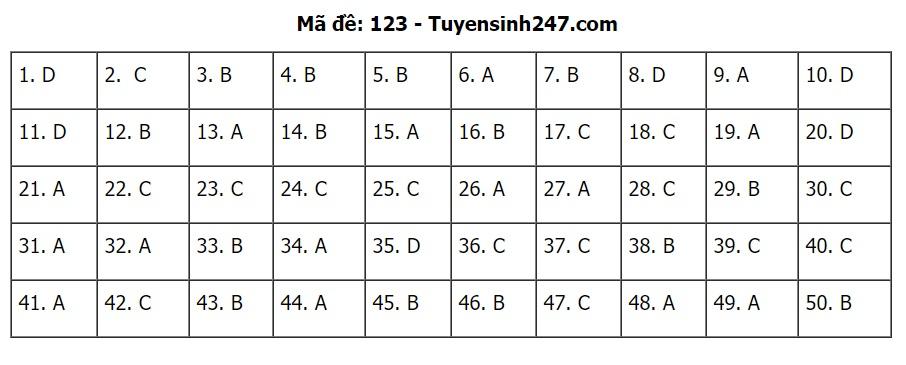 Đáp án, đề thi môn Toán mã đề 123 tốt nghiệp THPT 2020 chuẩn nhất, chính xác nhất - ảnh 1