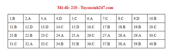 Đáp án, đề thi môn Vật lý mã đề 210 tốt nghiệp THPT 2020 chuẩn nhất, chính xác nhất - ảnh 1