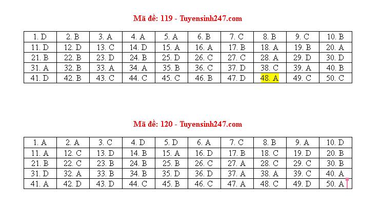Đáp án, đề thi môn Toán mã đề 119 tốt nghiệp THPT 2020 chuẩn nhất, chính xác nhất - ảnh 1