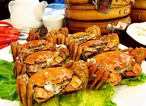 Ngọc Trinh đi du lịch Thượng Hải cùng gia đình bạn trai 72 tuổi - ảnh 1