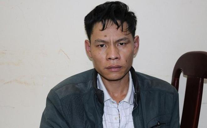 Tin tức pháp luật mới nhất ngày 3/4/2019: Kẻ chủ mưu Vì Văn Toán chi 10 triệu đồng thuê bắt cóc nữ sinh giao gà rồi sát hại? - Ảnh 1