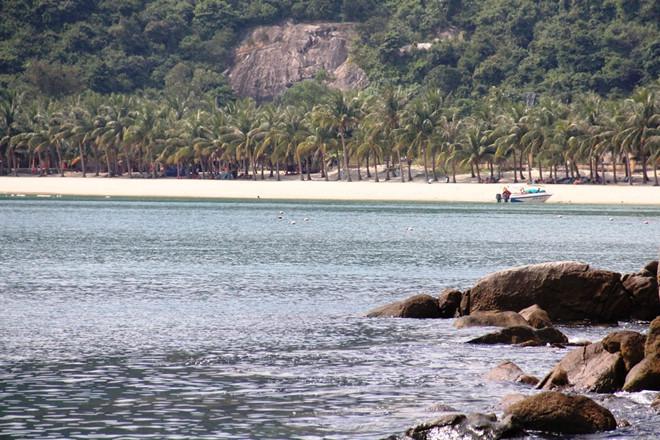 Du khách Hà Nội đột quỵ, tử vong khi tắm biển ở Cù Lao Chàm - Ảnh 1