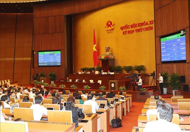 Quốc hội thông qua Nghị quyết phê chuẩn Hiệp định EVFTA và EVIPA - ảnh 1