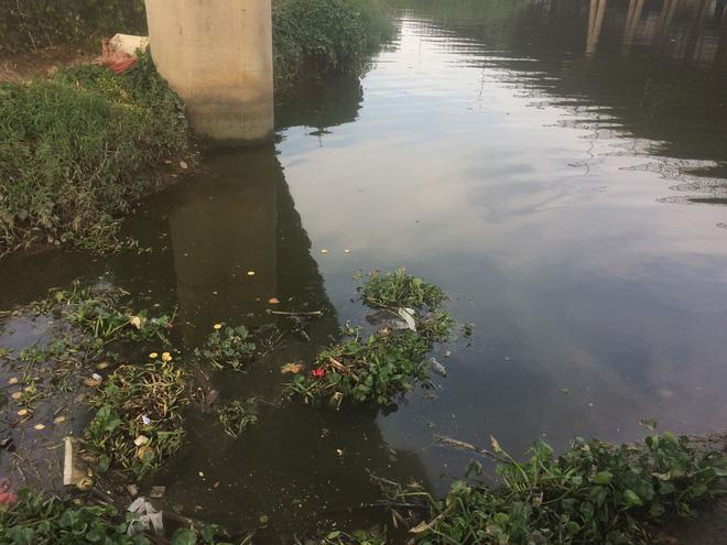 Ngửi thấy mùi hôi nồng nặc, đi tìm phát hiện thi thể đang phân hủy nổi trên sông - Ảnh 1
