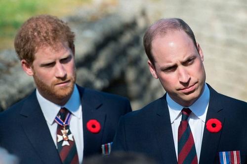 Hoàng gia Anh kiếm tiền từ đâu? - ảnh 1