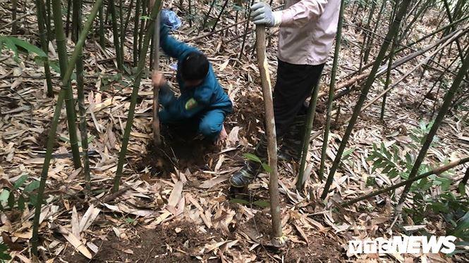 Kỳ thú chuyện săn lùng loài chuột khổng lồ trong rừng tây Yên Tử - Ảnh 1