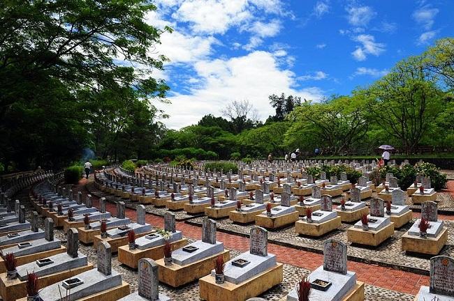 Cây bồ đề linh thiêng và xúc cảm lạ kỳ ở nghĩa trang liệt sĩ lớn nhất nước - ảnh 1