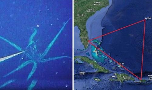 Bí ẩn Tam giác quỷ Bermuda: Khám phá những sinh vật kỳ bí khiến tàu thuyền mất tích - ảnh 1