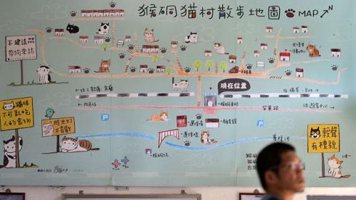 Khám phá Houtong: Ngôi làng mèo nổi tiếng bậc nhất ở Đài Loan  - Ảnh 2