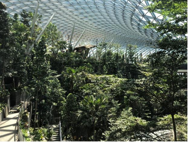 Mô hình sân bay công viên sinh thái Jawel Changi tại Singapore - Ảnh 1