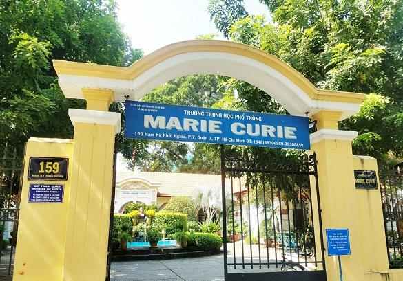 Vụ chi phí hơn 230 triệu chặt, tỉa cây tại trường Marie Curie: Công ty cây xanh TP.HCM nói gì? - ảnh 1