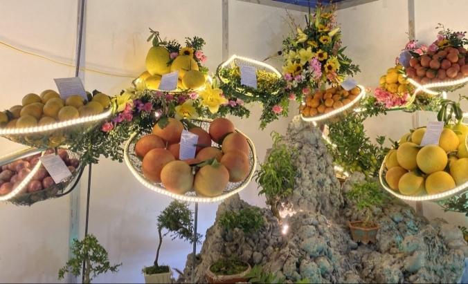 Đặc sắc Hội chợ Cam, bưởi và các sản phẩm đặc trưng Lục Ngạn  - ảnh 1
