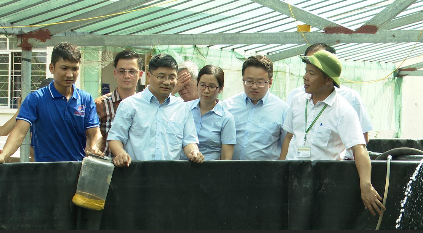 Chủ tịch HĐQT Công ty CP cá sạch Việt Nam mong muốn phục vụ xã hội những sản phẩm thủy sản chất lượng  - ảnh 1