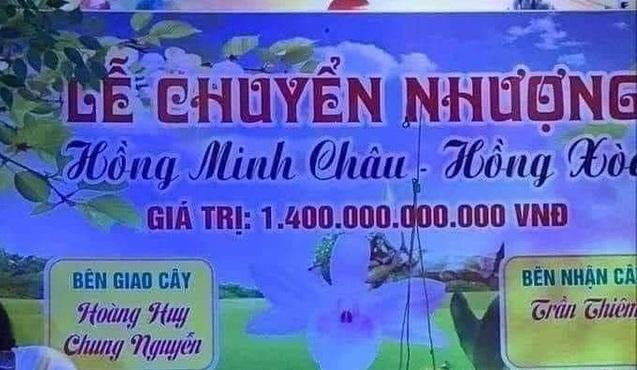 Sự thật bất ngờ về cây lan đột biến hồng minh châu có giá 1.400 tỷ đồng gây xôn xao mạng xã hội - ảnh 1