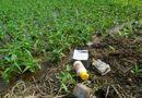 Truyền thông - Thương hiệu - Ô nhiễm môi trường vì thuốc bảo vệ thực vật