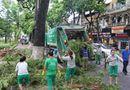 Tin trong nước - Hà Nội: 773 tấn rác được thu dọn sau cơn bão số 1