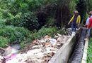 Tin trong nước - Đề nghị xử phạt công ty Việt Phước xả bẩn ra sông Sài Gòn
