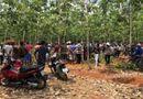 An ninh - Hình sự - Thảm án ở Hà Giang khiến 4 người chết, 1 người bị thương