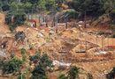 Tin trong nước - Xác minh thông tin bán đảo Sơn Trà bị đào xới