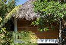 Ăn - Chơi - Mê mẩn với ngôi nhà vườn lợp mái lá dừa đẹp ngang khu nghỉ dưỡng cao cấp