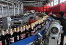 Kinh doanh - Sabeco bán bia, thu hơn 75 tỷ đồng mỗi ngày