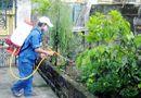 Tin trong nước - Hà Nội: 4 người tử vong do dịch sốt xuất huyết