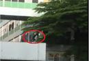 Tin tức - Nam công nhân bất ngờ nhảy từ tầng 3 xuống đất sau cuộc cãi vã