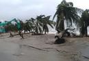 Tin tức - Tin bão số 12 mới nhất ngày 4/11: Bão Damrey đang