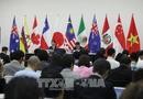 APEC 2017: Các nước tham gia CPTPP có thể tạm hoãn hạn chế một số nghĩa vụ