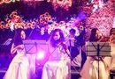 Đời sống - Valentine không đến Lễ hội Kỳ quan muôn sắc hoa Hạ Long thì quá phí