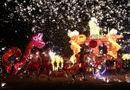 Thế giới rộn ràng đón năm mới Mậu Tuất