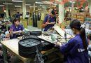Tin tức - Hà Nội đưa 6,7 triệu cổ phần tại cơ điện Thống Nhất ra bán đấu giá